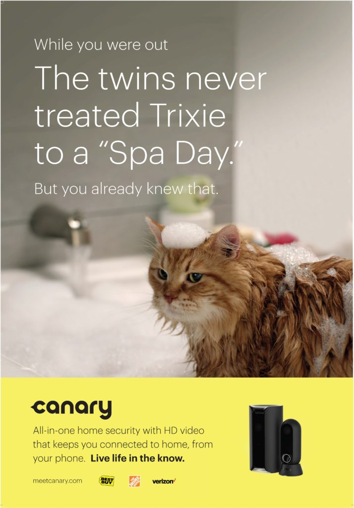 canary_hob_bus_shelter_full_c2_cat